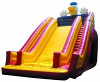 Inflatable slide and Tunnels