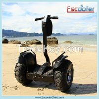 2015 Hot sale electric chariot x2
