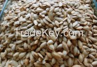 PUMPKIN SEED, SUNFLOWER SEEDS