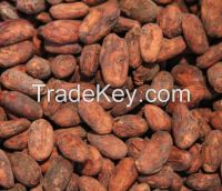 COCOA BEANS,COFFEE,COFFEE POWDER