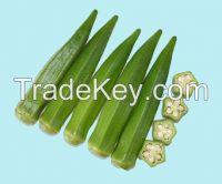 sheng yuan no.5 okra seed