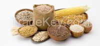 Grains And Pastas