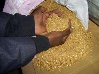 AU GOLD DUST & GOLD BARS / NUGGETS POWDER