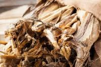 Stockfish for sale