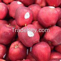 Fresh Fruits Orange / Apple / Banana