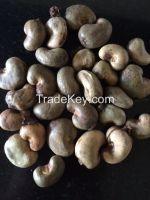 Raw cashews from Africa ( Tanzania, Benin, Ivory Coast )