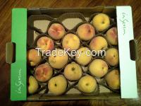 Fruit Holder (Peaches)
