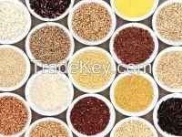 Grains, Sorghum, Chia Seeds, Quinoa, Rye, Barley, Oats, White Rice, Basmati Rice, Jasmine Rice, Aromatic Rice, Broken Rice, Yellow Corn, White Corn, Wheat Buckwheat,