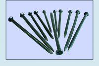 Nail,Common nail,Masonry Nail,Coil Nail and so on