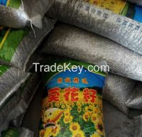 New Crop Long Type Sunflower Seeds