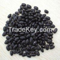 Black Kidney Beans