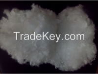 polyester fiber hollow conjugated siliconized