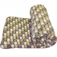 Micro Fiber Flannel Coral Fleece Blanket