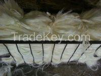 100% Natural Sisal Fiber(Agave sisalana) of Kenyan Origin With Free Samples