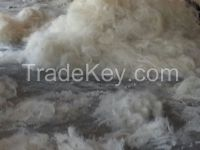 Best Quality Sisal Fiber for Export with Free Samples