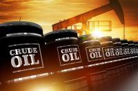 LPG  LNG  fuel oil M 100