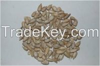 2014 New crop big sunflower seed kernel with low price for Oil