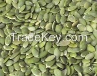 New Crop Hulled Pumpkin Seeds Kernels  �AAA Grade�