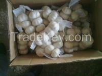 fresh Chinese garlic/natural garlic/wihte garlic