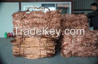 Factory hot sell Copper Wire Scrap 99.9%/Millberry Copper Scrap 99.99%