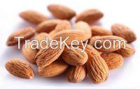 Top quality Almonds,2014 new wholesale raw almond,Organic China almond