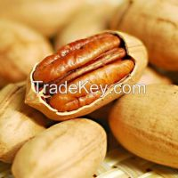 European standard Nutrition Pecan Nut