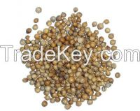 fennel and caraway seeds