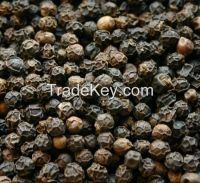 black pepper latest rate 2015