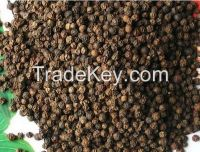 dried Black Pepper 500 gl!!