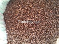 bulk quantity BLACK PEPPER with cheap price