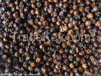 Vietnamese Black Pepper whole 500 gr/l