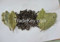 2015 Dried Style And Raw Proccessing black pepper