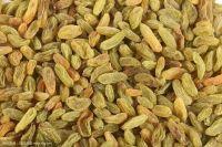 Dried Fruits Raisins