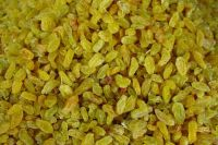 bulk sale chinese xinjiang golden raisin
