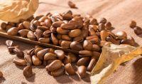 pine nut in shell