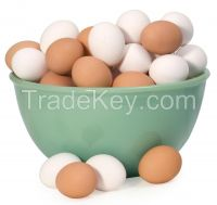 Top grade Fresh White and brown eggs