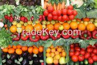 Fresh Fruits &