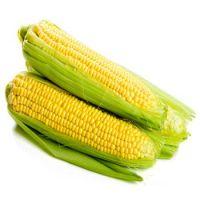 Best Dried Corn