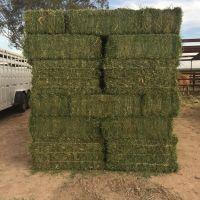 High Protein Alfalfa Hay Bales