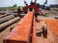 Red Padauk wood