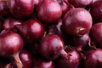 Freshly Harvest  Red Onion