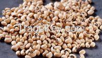 Brown Eye Beans