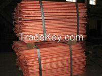 High purity Copper cathodes 99.99% (GG)