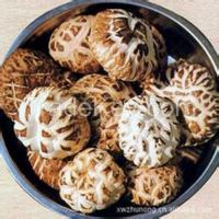 Sell Flower Mushrooms