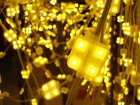 Super Bright LED Module - STAR C04