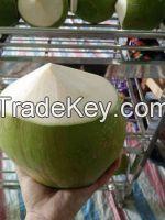 Peeling 2 top Coconut