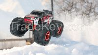 1:6 scale big wheel rc truck