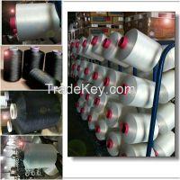 150D/48F Poliester/ Polyamide DTY(Draw Textured Yarn)