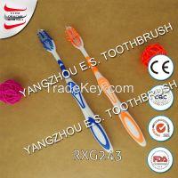adult Toothbrush RXG243