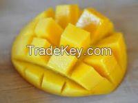 FRESH AND FROZEN MANGO FRUIT